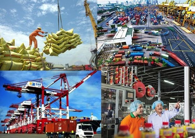 Vietnamese businesses upbeat about trade hinh anh 1