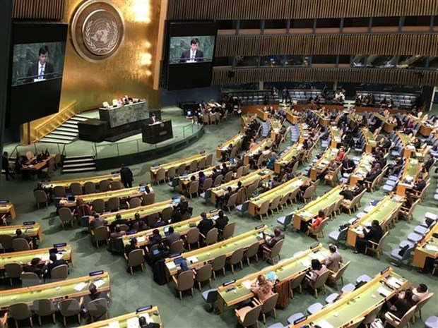 Vietnam welcomes UN resolution calling for end of embargo against Cuba hinh anh 1