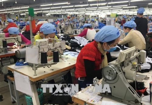 EVFTA to act as catalyst for textile, footwear exports: experts hinh anh 1