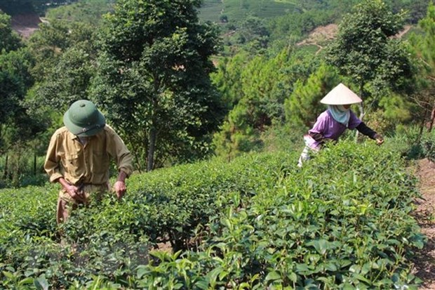 Vietnam targets effective ODA use, management hinh anh 1