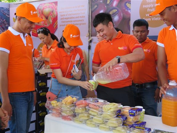 Dutch Cultural Festival opens in Can Tho hinh anh 1