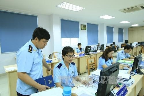 HCM City refines customs procedures hinh anh 1