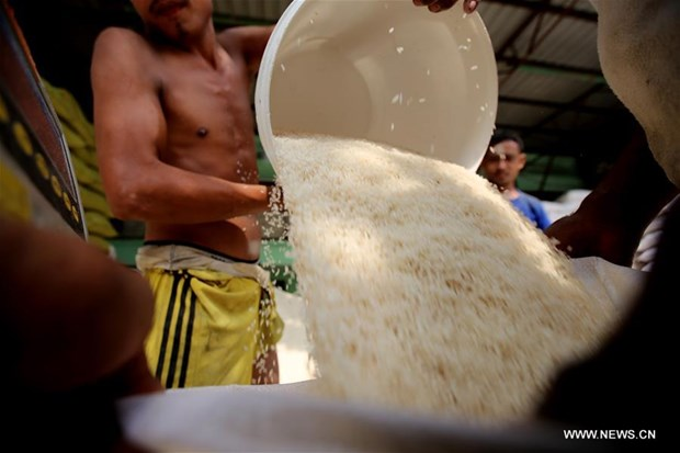 Myanmar earns almost 436 million USD from rice exports hinh anh 1