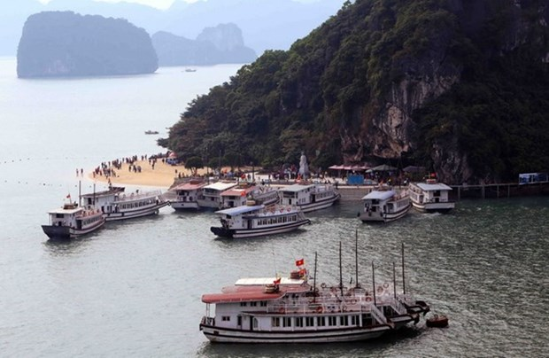 Ha Long city to inspect operations of tourist boats hinh anh 1