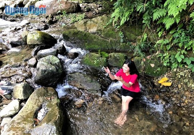 Tuyen Tung waterfall, a highlight in Quang Ngai tourism hinh anh 1