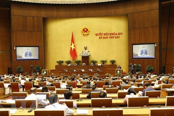 National Assembly debate issues of public interest on November 13 hinh anh 1