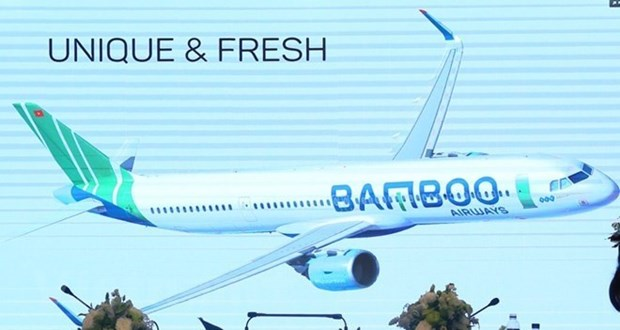 Aviation business licence granted to Bamboo Airways hinh anh 1
