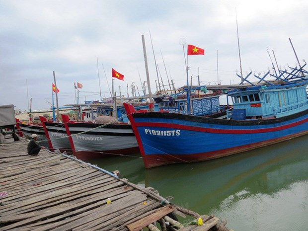 Satellite devices effective in monitoring fishing boats hinh anh 1