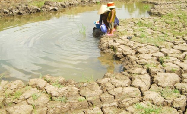 Netherlands helps to improve water supply capacity in Mekong Delta hinh anh 1