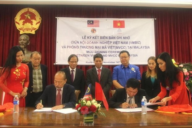 New impulse for Vietnam-Malaysia business cooperation hinh anh 1