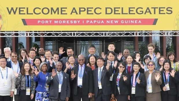 APEC focuses on promoting regional, global economic connectivity hinh anh 1