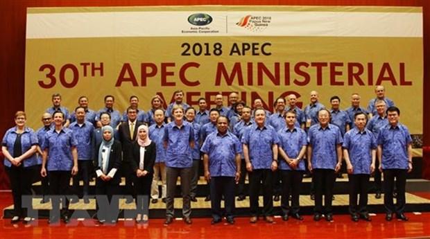 Deputy PM Pham Binh Minh busy at APEC meeting hinh anh 1