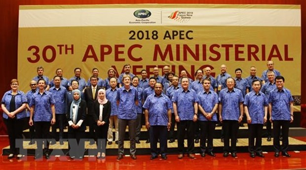 Deputy PM: APEC remains focus of Vietnam's foreign policy hinh anh 1
