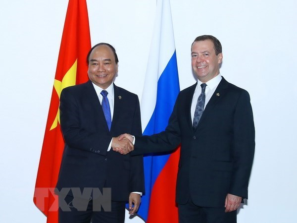 Russian PM's Vietnam visit promotes result-oriented cooperation hinh anh 1