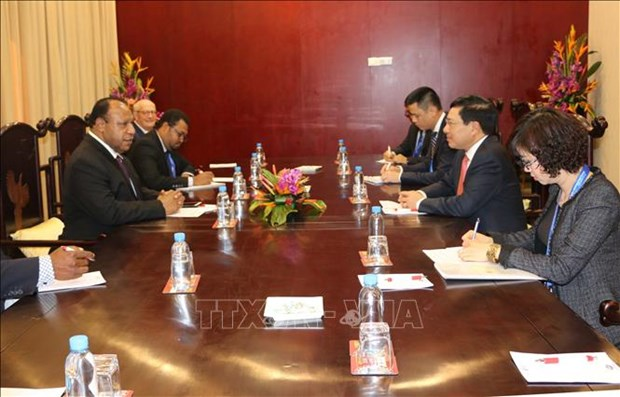 Deputy PM Pham Binh Minh meets with Papua New Guinea Foreign Minister hinh anh 1