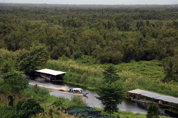 Vietnam's wetlands under threat hinh anh 1