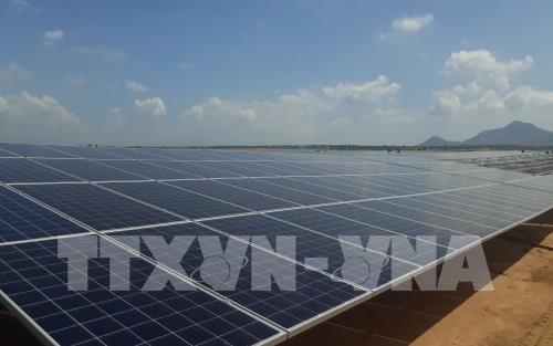 Central province aims to commission solar power plants next year hinh anh 1