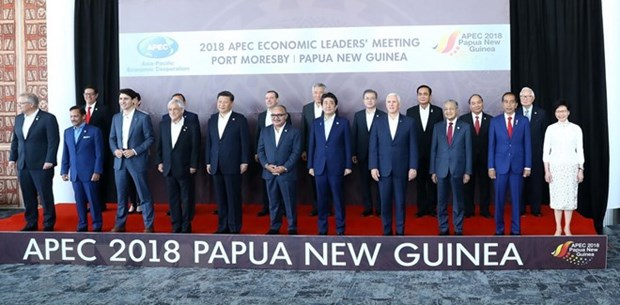 APEC leaders focus on discussing free trade hinh anh 1