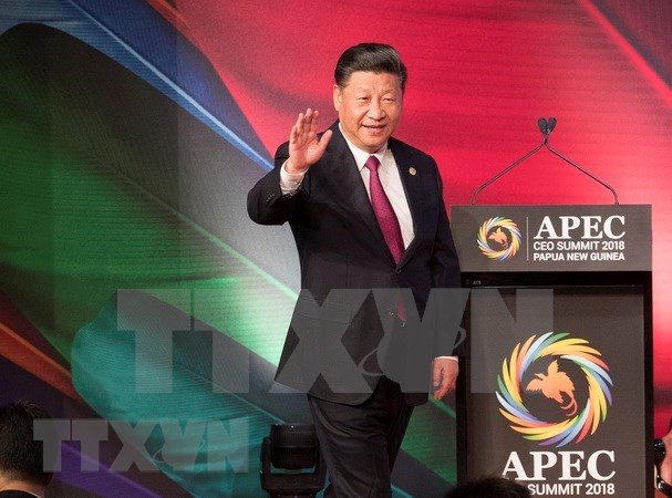 Chinese leader urges APEC members to work towards open global economy hinh anh 1