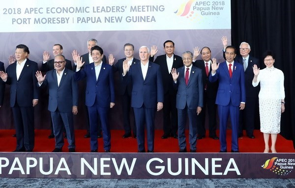 APEC should uphold role in regional, global connectivity: PM hinh anh 2