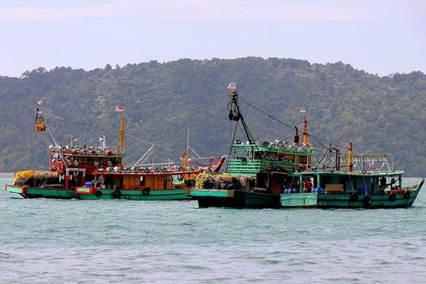 Indonesian fishermen call for early border demarcation with Malaysia hinh anh 1