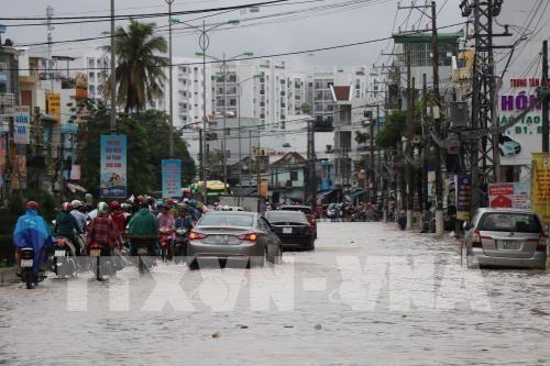 Khanh Hoa: Torrential rains leave 12 dead, five missing hinh anh 1