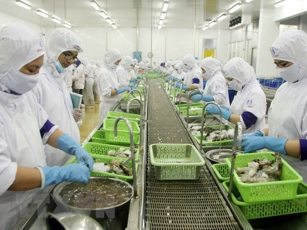 Ca Mau works to achieve 1.2 billion USD in exports hinh anh 1