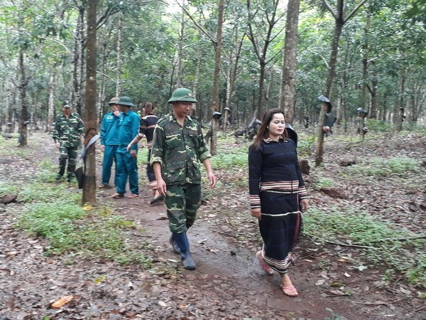 Conference calls for more foreign aid in Gia Lai province hinh anh 1