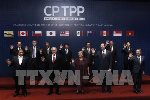 CPTPP to bring great chances for Singaporean businesses hinh anh 1