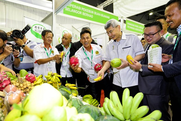 Malaysia moves to step up modernisation of agro-food sector hinh anh 1