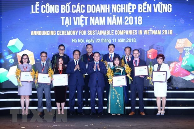 Vietnam announces top 100 sustainable enterprises in 2018 hinh anh 1