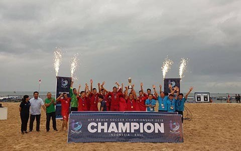 Vietnam champion ASEAN beach football tourney hinh anh 1