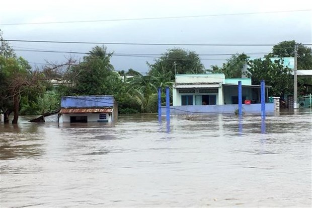 Storm Usagi devastates central, southern localities hinh anh 1