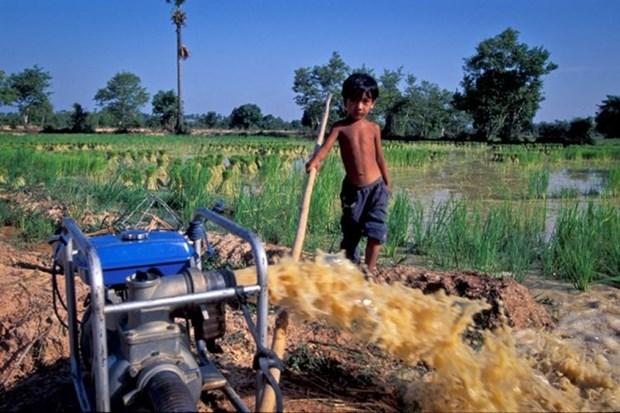 ADB helps improve Vietnam's irrigation systems hinh anh 1