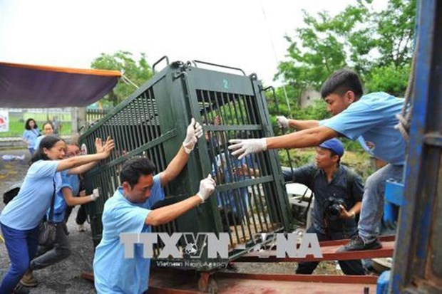 Businesses join hands to fight wildlife crime hinh anh 1