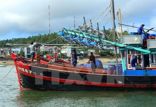 Ministry speeds up installation of fishing boat-tracking devices hinh anh 1