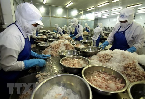 Bac Lieu looks toward 1 billion USD in shrimp export earnings hinh anh 1