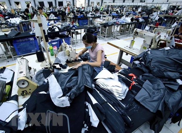 Newly-established firms down in November hinh anh 1