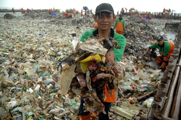 Indonesia cleans up trash on Thousand Islands hinh anh 1