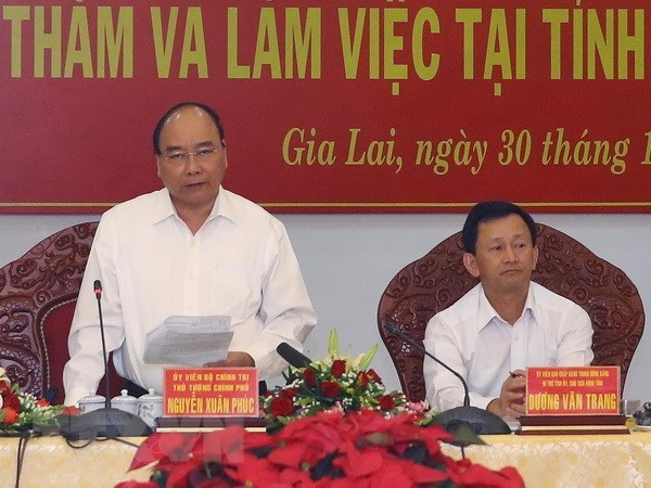 Gia Lai needs to increase forest coverage: PM hinh anh 1