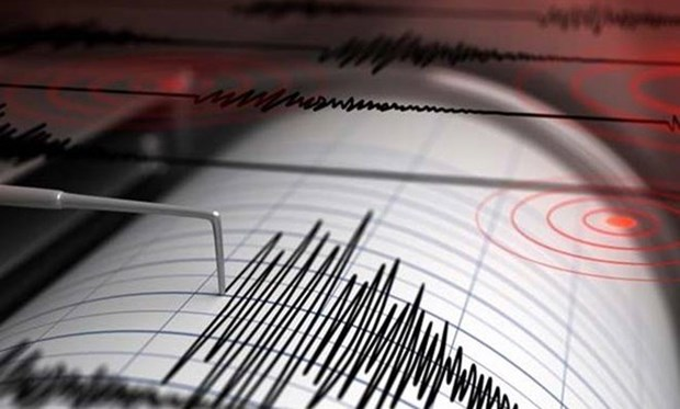 Earthquake strikes off Indonesia's Tanimbar islands hinh anh 1