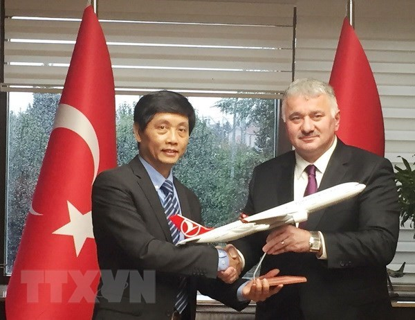 Vietnam aims to attract more Turkish investors hinh anh 1