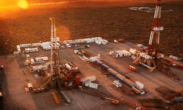 Malaysian, Argentinean firms to set oil joint venture hinh anh 1