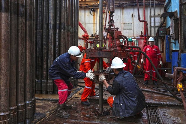 PetroVietnam surpasses production targets for 11 months hinh anh 1