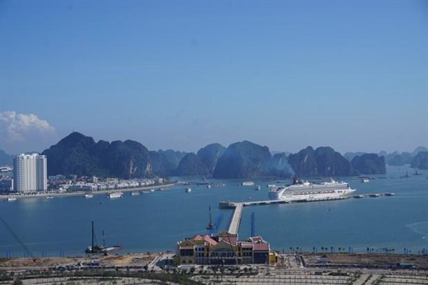 Seminar looks into cruise tourism development hinh anh 1