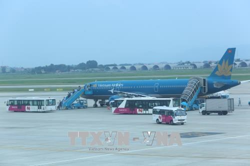Aviation market records stable growth hinh anh 1