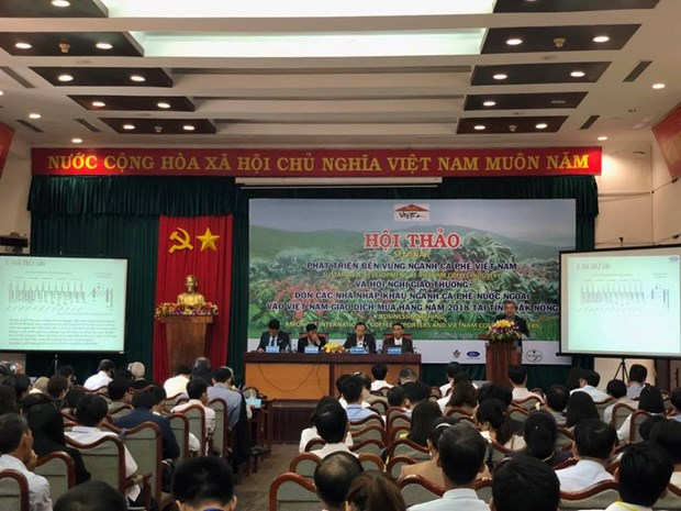 Deep processing needed to raise value of coffee: experts hinh anh 1