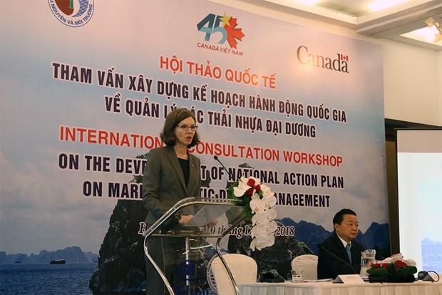 Int'l confab looks to build plan on marine plastic waste management hinh anh 1