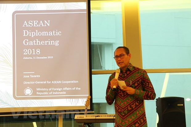 Indonesia updates diplomats of ASEAN progress hinh anh 1