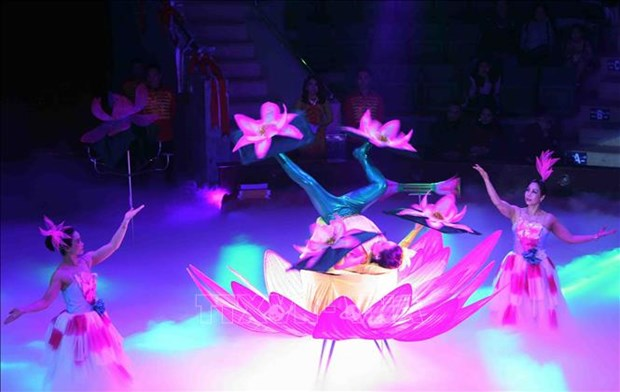 Circus artists show off talent at national competition hinh anh 1